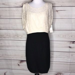 French Connection Planet Lace Dress Black & Cream
